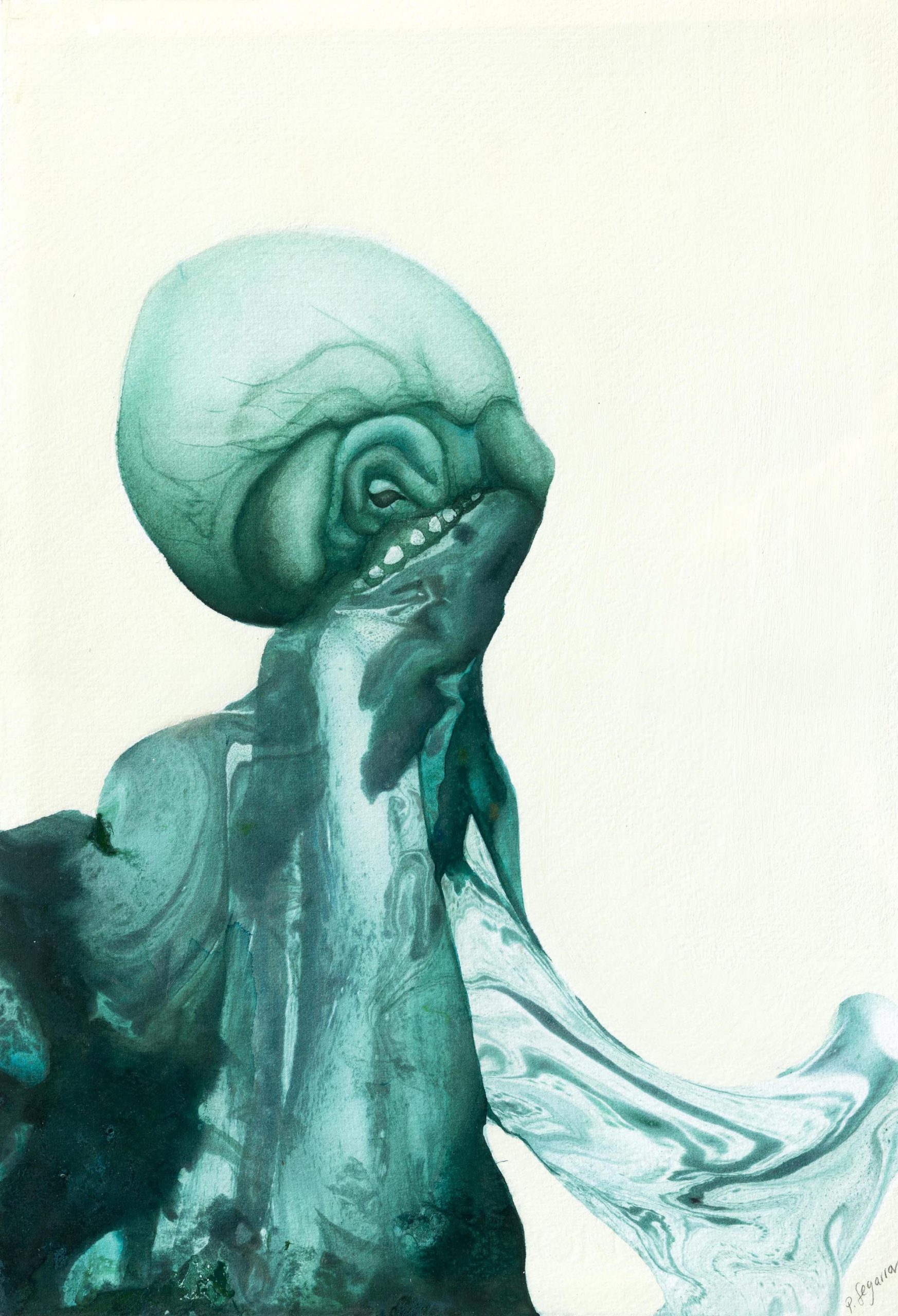 Octopus Paula Segarra Art