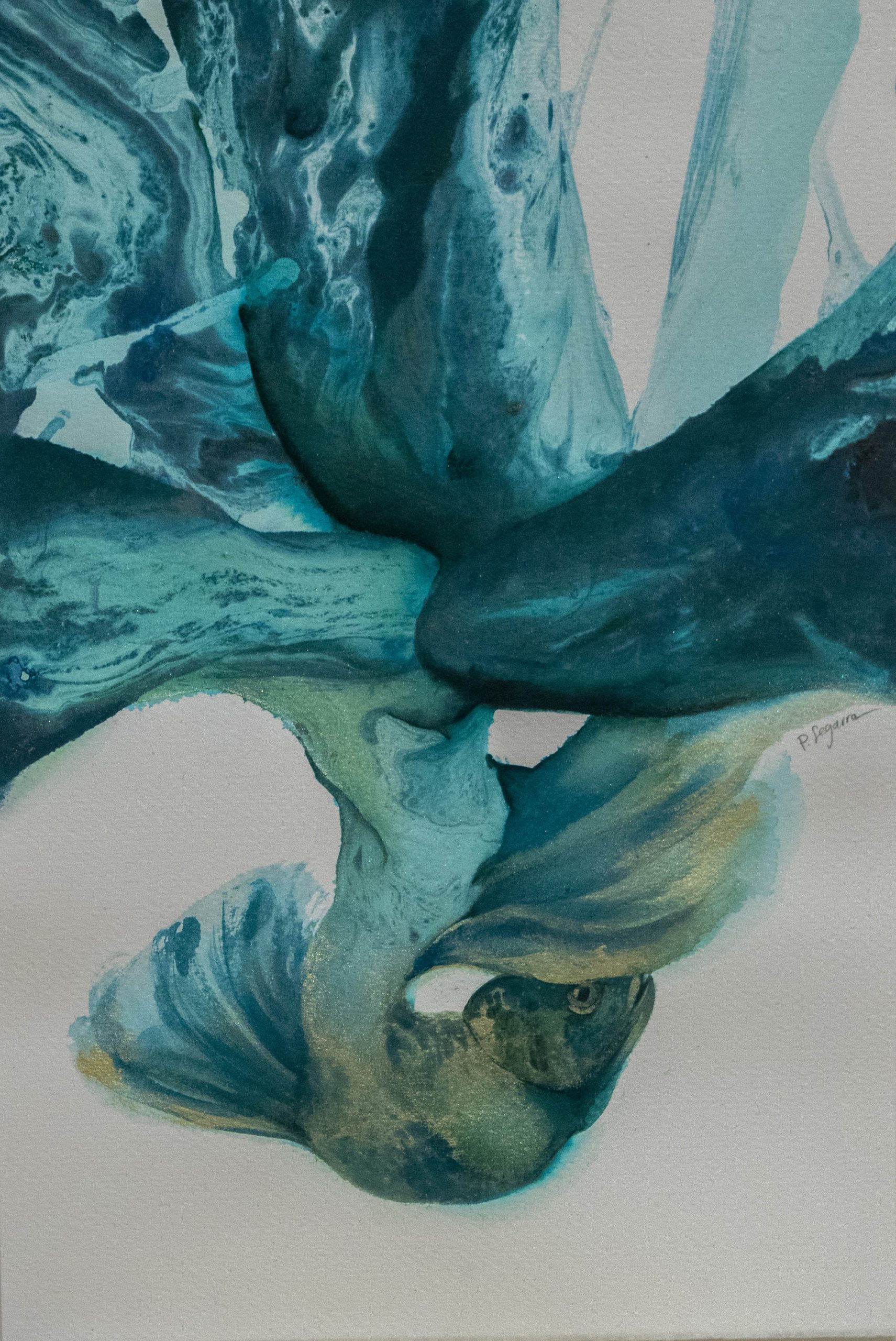 Abisales by Paula Segarra